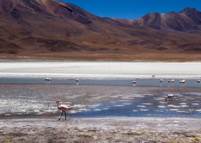 La Bolivie